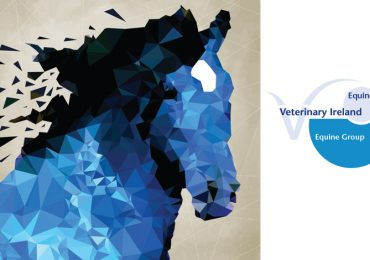 irish-equine-veterinary-conference-2014