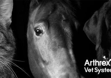 arthrex-vet-systems