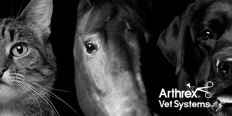 Pan Vet appointed Veterinary agent for Arthrex in Ireland